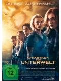Chroniken der Unterwelt - City of Bones (DVD)
