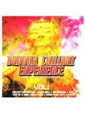 Various - Buddha Chillout Experience - Vol. 1 (CD)