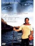 Cast Away - Verschollen (Einzel-DVD)
