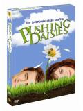 Pushing Daisies - Staffel 1 (DVD)