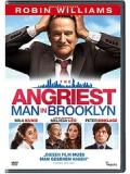 Angriest Man in Brooklyn (DVD)