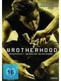 Brotherhood - Die Bruderschaft Des Todes Steelbook (DVD)