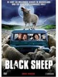 Black Sheep - Uncut (DVD)